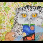 """""""Ruru (Owl)"""" by KrisManvell"""