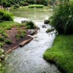 """Japanese Garden"" by TravelandInspiration"