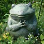 """""""Zen Frog"""" by BoMcNair"""