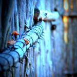 """Sundown Fence"" by BlytheIvy"