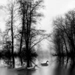 """Serenity"" by KatyBreen"