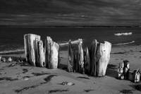 Shore Pilings on PEI