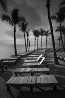 Sun Bathing Benches on Key Islamorada