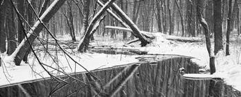 Winter Stream 52 BW Pan