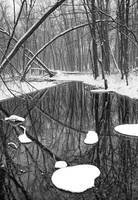 Winter Stream 057 BW Vertical