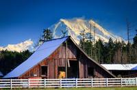 Mount Rainier and barn