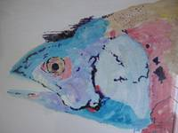 Rainbow fish by choice