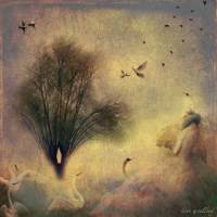 meadow swans Art Prints & Posters by kira westland