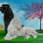 """Labradoodle Spring"" by mozache"
