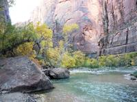 Fall View of the Virgin River, Zion National Park
