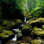 """Elowah Falls"" by JMonroe"