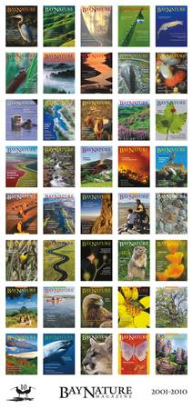 Bay Nature Cover Gallery