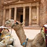 """Camel in Petra"" by jcarillet"