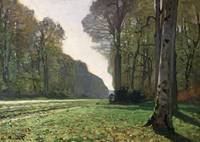 The Road to Bas-Breau Fontainebleau by Monet 1865