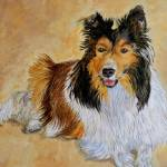 """Lenny the Sheltie"" by mozache"