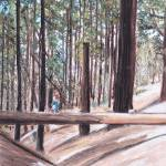 """Mariposa Grove in Yosemite"" by SheilaArt"