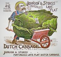Dutch Cabbage Vintage Advertisement
