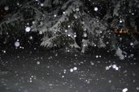 snowing at night 2