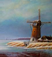 Winter windmill