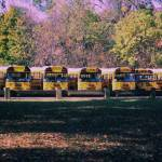"""School buses"" by oldawnie"
