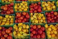 Small Tomatoes, Farmers' Market