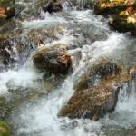 """""""water1"""" by ullikarner"""