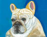 Marcel Too, French Bulldog Dog Portrait