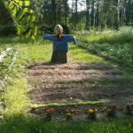 """""""Home garden"""