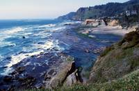 The Pacific Coastline