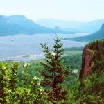 """Columbia River Gorge"" by barbsummering"