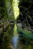 The Vintgar gorge, Gorje, near Bled, Slovenia