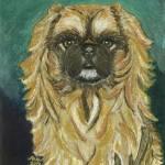 """Jasmine, Pekingese Dog Portrait"" by AniaMMiloART"
