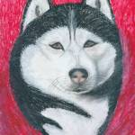 """Boris, Siberian Husky Dog Portrait"" by AniaMMiloART"