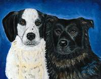 Oreo & Buddy Dog Portrait