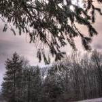 """Winter Evening"" by ZeipekisPhotography"