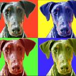 """Dobermann Popart"" by ArtsandDogs"