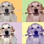 """Golden Retriever Popart"" by ArtsandDogs"