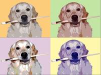 Golden Retriever Popart