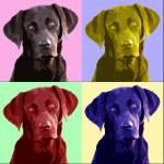 """Labrador Popart"" by ArtsandDogs"