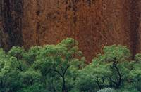 Sandstone River Wall