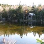 """""""Hidden Lake"""" by crazykatldy"""
