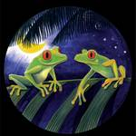 """Red Eyed Tree Frogs"" by savanna"