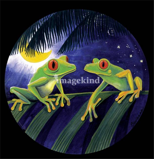 Stunning frog mural artwork for sale on fine art prints for Austin frog mural
