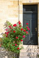 Door in St. Emilion