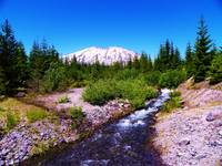 The Flow Of Nature - Mount Saint Helens
