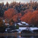 """Dugualla Bay Winter"" by nilesphotography"