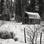 """Old barn on Dufort Road, north Idaho"" by SamSherman"