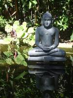 Meditation Statue Reflection