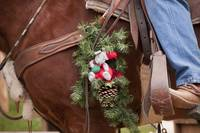 Horse and Christmas Decorations, Coloma