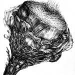 """""""artichoke"""" by Elspeth"""
